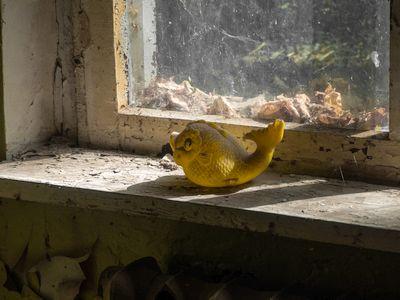 Tschernobyl Zu Besuch in der verlorenen Stadt
